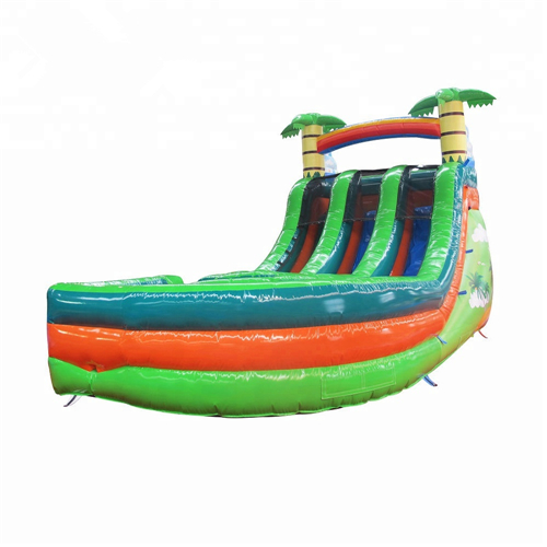 coco theme bounce and slide for sale